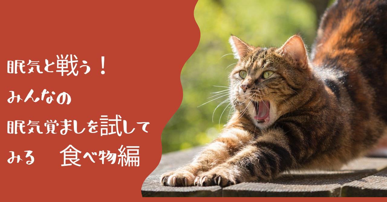 あくびをしながら伸びをするトラ猫