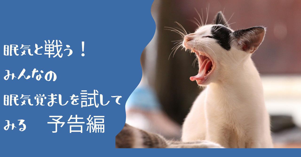 横を向いてあくびをする猫