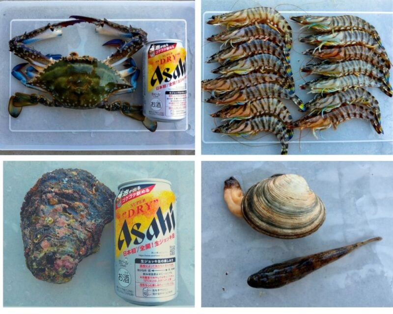 ワタリガニと岩ガキと缶ビールそしてクルマエビに蛤